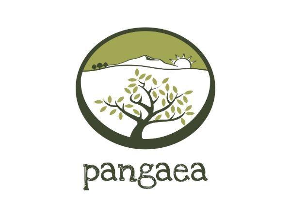 Pangaea Olivenöl